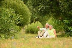 Couples supérieurs heureux en parc dehors Images stock