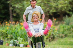 Couples supérieurs heureux jouant avec une brouette Photos libres de droits