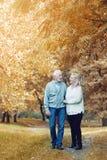 Couples supérieurs heureux souriant dehors en nature Images libres de droits