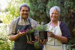 Couples supérieurs heureux tenant la plante en pot dans le jardin photo libre de droits