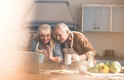 Couples supérieurs joyeux utilisant l'ordinateur portable pour la communication en ligne Image stock