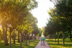Couples supérieurs marchant avec le vélo Photographie stock