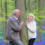 Couples supérieurs marchant dans la forêt Photographie stock libre de droits