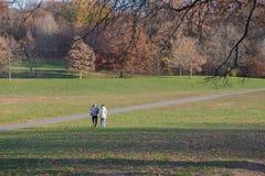 Couples supérieurs marchant en parc d'automne Image stock