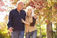 Couples supérieurs marchant par Autumn Woodland Photo libre de droits