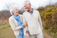 Couples supérieurs marchant par la campagne d'hiver images stock
