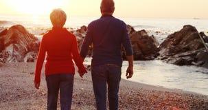 Couples supérieurs marchant sur la plage 4k banque de vidéos