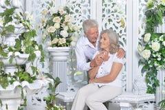 Couples supérieurs posant dans la chambre légère Photos libres de droits