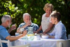 Couples supérieurs prenant le petit déjeuner dans le jardin Images libres de droits
