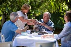 Couples supérieurs prenant le petit déjeuner dans le jardin Image libre de droits