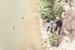 Couples supérieurs regardant des canards nageant en rivière Neckar Images stock