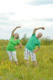 couples supérieurs s'exerçant en parc d'été Image stock