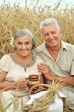 Couples supérieurs se reposant au champ d'été Images stock