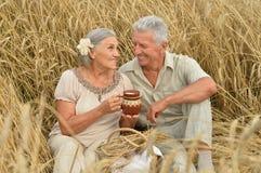 Couples supérieurs se reposant au champ d'été Photographie stock