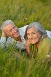 Couples supérieurs se reposant au parc Photo libre de droits