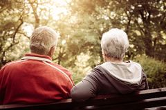Couples supérieurs se reposant sur le banc après exercice Du dos photo libre de droits