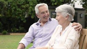 Couples supérieurs se reposant sur le banc et parler clips vidéos