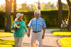 Couples supérieurs sur le fond de parc Photo stock