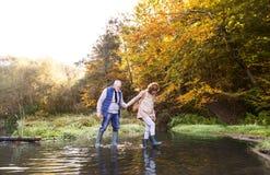 Couples supérieurs sur une promenade en nature d'automne Images stock