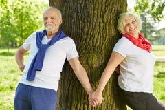 Couples supérieurs tenant des mains en nature Image stock