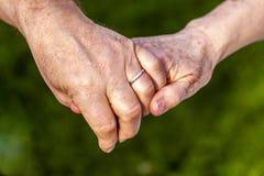 Couples supérieurs tenant des mains tout en se reposant ensemble dans le jardin Images stock