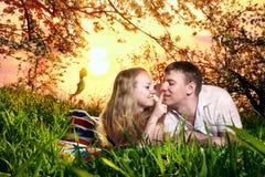 Couples sur l'herbe verte au coucher du soleil image stock