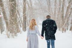 Couples sur la nature en hiver pendant chutes de neige Image stock