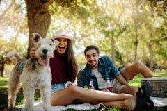 Couples sur le pique-nique avec le chien Image stock