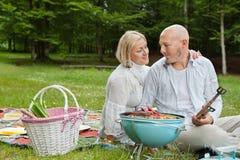 Couples sur un pique-nique extérieur Image libre de droits