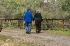 Couples tenant des mains marchant loin photos stock