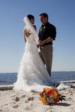 Couples tropicaux de mariage de plage Photos libres de droits