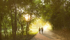 Couples. Are walking together in the park Royalty Free Stock Image