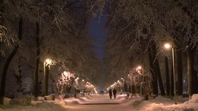 Couples walking in a winter evening city park view. View of a winter evening city park, with couples walking along the alley, beautiful trees covered with white stock video footage