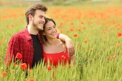 Couplez étreindre et marcher dans un domaine vert Image stock