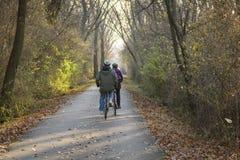 Couplez apprécier un tour paisible dans les bois sur des bicyclettes image stock