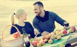 Couplez avoir le pique-nique dans la journée de printemps ensoleillée à la campagne Images stock