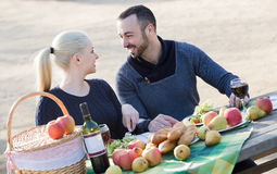 Couplez avoir le pique-nique dans la journée de printemps ensoleillée à la campagne Image libre de droits