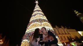 Couplez dans l'amour tenant des chiens et des baisers de cutie L'arbre de Noël est sur le fond Concept d'an neuf heureux banque de vidéos