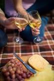 Couplez griller des verres à vin par les raisins et le fromage sur la couverture de pique-nique Photographie stock