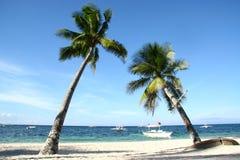 couplez l'arbre de noix de coco de penchement de l'île de Panglao le jour ensoleillé lumineux de ciel bleu avec la plage blanche images stock