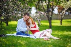 Couplez la détente sur l'herbe dans le jardin de floraison de ressort Photographie stock