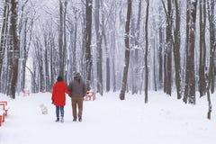 Couplez la marche avec un chien en parc neigeux Image stock