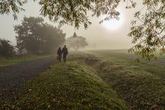 Couplez la marche dans la forêt dans le brouillard Images stock