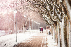 Couplez la marche dans la neige d'hiver, en montrant l'amour et le concept romantique Photographie stock libre de droits