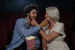 Couplez le maïs éclaté de alimentation entre eux tout en se reposant dans le théâtre Image libre de droits