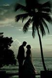 Couplez les baisers après un mariage à la plage Photo stock