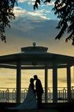 Couplez les baisers après un mariage à la plage Images stock