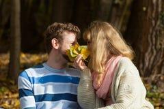 Couplez les baisers en parc d'automne se cachant derrière des feuilles Images libres de droits