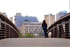 Couplez les bicyclettes d'équitation sur la façade d'une rivière de Mississipi à Saint Paul, Minnesota Photos libres de droits