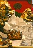 Couplez les lions en bronze gardant l'entrée au palais intérieur du Cité interdite Pékin image libre de droits